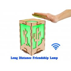 Long Distance Lamp with Cactus