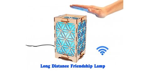 Long Distance Lamp with Daisy petals