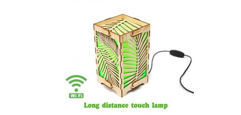 Long Distance Lamp with Palm Leaves