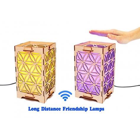 Set of 2 Long Distance Friendship Lamp Circles